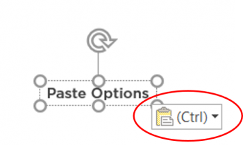 Microsoft Office Formatting Frustrations: Copy and Paste, Part 1